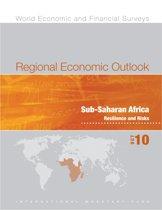 Regional Economic Outlook, Sub-Saharan Africa, October 2010