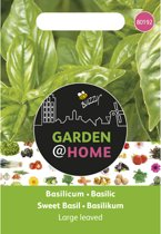 Garden@Home Basilicum Grove