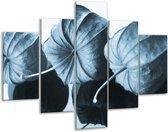 Glas schilderij Bloem | Blauw, Wit | 100x70cm 5Luik | Foto print op Glas |  F006601