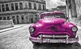 Pink | Gray Photomural, wallcovering