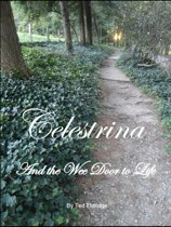 Celestrina and the Wee Door to Life