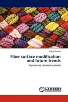 Fiber Surface Modification and Future Trends