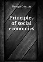 Principles of Social Economics