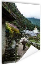 Everest basiskamp Nepal  Poster 60x90 cm - Foto print op Poster (wanddecoratie woonkamer / slaapkamer)
