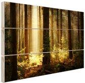 Bos met zonnestralen Hout 160x120 cm - Foto print op Hout (Wanddecoratie) XXL / Groot formaat!