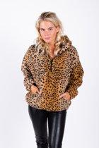 Leopard teddy hoody