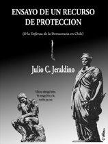 Ensayo de un Recurso de Proteccion