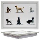 LC Laptray, Schootkussen, schoottafel, laptoptafel, dienblad met kussen Honden - 43,5 x 32,5 x 6 cm