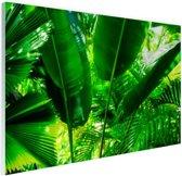 FotoCadeau.nl - Tropische bladeren in jungle  Glas 120x80 cm - Foto print op Glas (Plexiglas wanddecoratie)