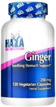 Ginger Haya Labs 120v-caps