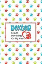 Dexter Leaves Paw Prints on My Heart