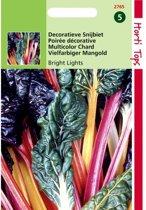 Snijbiet Bright Lights - Beta vulgaris - set van 4 stuks