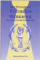Pleiadisch werkboek serie 2 - Het Pleiadisch Tantrisch werkboek