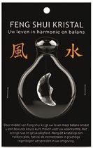 Feng shui raamhanger maan - transparant