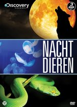 Discovery Channel : Nachtdieren