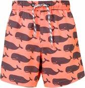 Snapper Rock UV werende Zwembroek Kinderen Whale - Oranje - Maat 140-146