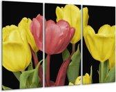 Glasschilderij Tulpen | Roze, Geel, Groen | 120x80cm 3Luik | Foto print op Glas |  F003192