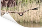 Vale gier vliegt laag over het wateroppervlak Tuinposter 90x60 cm - Tuindoek / Buitencanvas / Schilderijen voor buiten (tuin decoratie)
