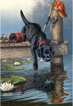 Schilderen Op Nummer - Hond