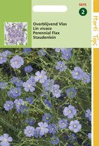 Hortitops Zaden - Linum Perenne (Vlas) Blauw