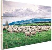 Kudde schapen  Hout 80x60 cm - Foto print op Hout (Wanddecoratie)
