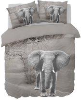 Nightlife Dekbedovertrek Afrikaanse olifant 140x200/220 - Polykatoen - Grijs