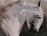 Horka Wenskaart Paard Bruine Achtergrond 12,5 X 18 Cm