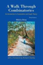 Walk Through Combinatorics, A
