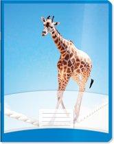 Schriften 6-3-6 Blauw Dieren Giraffe koorddansen 25 stuks in een pak