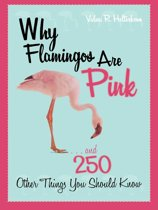 Why Flamingos Are Pink