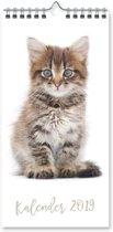 Kalender 2019 Katten (15cm x 30cm)