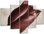 Glasschilderij Tulp | Bruin, Grijs, Wit | 100x70cm 5Luik | Foto print op Glas |  F002499