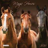 Paarden - Magic Horses Kalender 2020