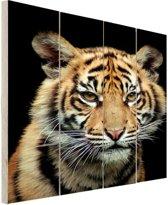 Sumatraanse tijgerwelp Hout 60x80 cm - Foto print op Hout (Wanddecoratie)
