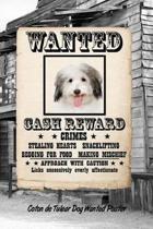 Coton de Tulear Dog Wanted Poster