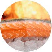 Zalm | Wanddecoratie | Ronde Plexiglas | 100CM x 100CM | Schilderij | Foto op plexiglas