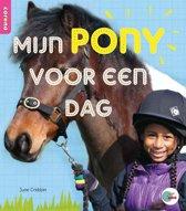 In de ROOS - Mijn pony voor een dag