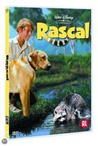 Rascal (dvd)