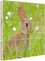 FotoCadeau.nl - Haas in het gras afdruk Hout 80x60 cm - Foto print op Hout (Wanddecoratie)