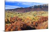 De kleurrijke valleien in het Nationaal park Piatra Craiului in Roemenië Aluminium 120x80 cm - Foto print op Aluminium (metaal wanddecoratie)