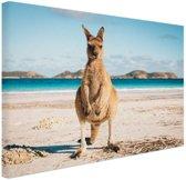 FotoCadeau.nl - Kangoeroe op het strand Australie Canvas 30x20 cm - Foto print op Canvas schilderij (Wanddecoratie)