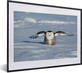 Foto in lijst - Sneeuwuil met gestrekte vleugels in de sneeuw fotolijst zwart met witte passe-partout klein 40x30 cm - Poster in lijst (Wanddecoratie woonkamer / slaapkamer)