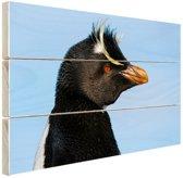 Noordelijke rotspinguin Hout 60x40 cm - Foto print op Hout (Wanddecoratie)