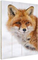 Portret van een vos Hout 20x30 cm - klein - Foto print op Hout (Wanddecoratie)