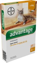 Advantage 40 Anti vlooienmiddel Kat - 4 pipetten