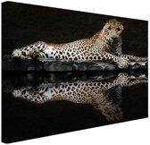 Luipaard bij het water Canvas 60x40 cm - Foto print op Canvas schilderij (Wanddecoratie woonkamer / slaapkamer) / Dieren Canvas Schilderijen