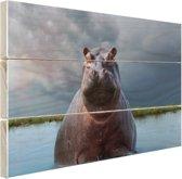 Nijlpaard in het water Hout 160x120 cm - Foto print op Hout (Wanddecoratie) XXL / Groot formaat!