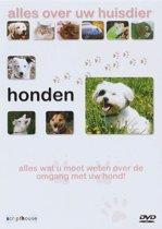 Honden - Alles Over Uw Huisdier