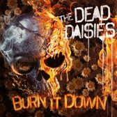 Burn It Down -Digi-