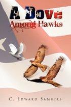 A Dove Among Hawks